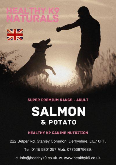 SP New Salmon & Potato